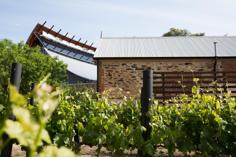 National wine centre from onsite vineyard