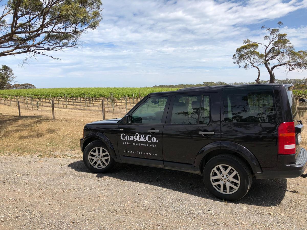 Luxury vineyard touring